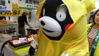 熊本県の観光と物産展くまモンお散歩