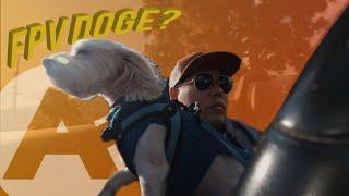 DJI FPV⁄⁄BRING THE FPV DOGE?⁄⁄OSMO POCKET WHOOP