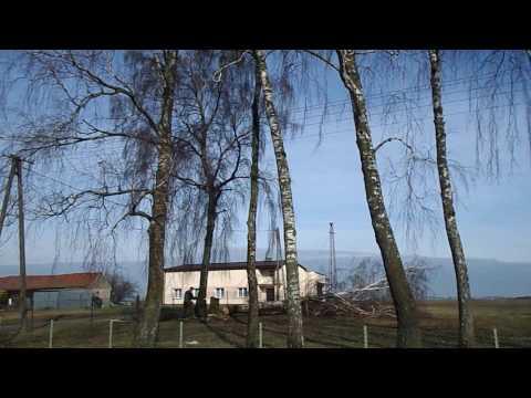 Malyshevoy program gruczołu krokowego