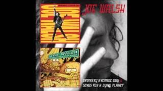 JOE WALSH -  Ordinary Average Guy (studio vers , full song)