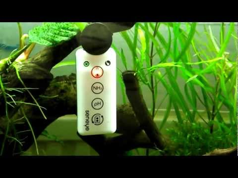 Review: Seneye Reef Aquarium Water Monitor for Reef and Planted Tanks