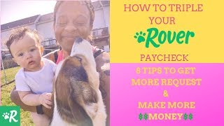 How to make Money as a Dog Sitter - Rover Tips & Tricks Make More money Dog-sitting
