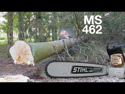 First Review Of Stihl MS 462 – 72cc Chainsaw