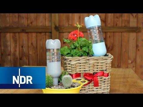 Gießtrick: Plastikflaschen als Wasserspender   NDR