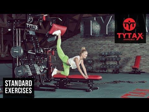 Prone Lever Rear Kick | TYTAX® M2