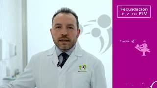 FIV (Fecundación in Vitro) - FIV Marbella