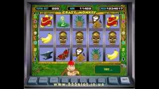 Сrazy Monkey - игровой автомат обезьянки выигрыш