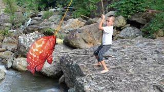Cá Mú Hấp Xì Dầu - Mao Đệ Tình Cờ Câu Được Cá Khủng Tại Nơi Không Ai Ngờ Được