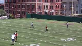SF FlameThrowers vs. Vancouver Riptide, June 1, 2014 - Full Game