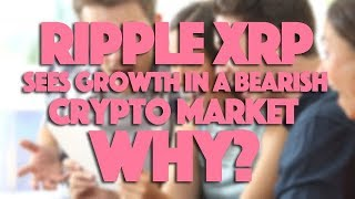 Ripple XRP Sees Growth In A Bearish Crypto Market - Why?