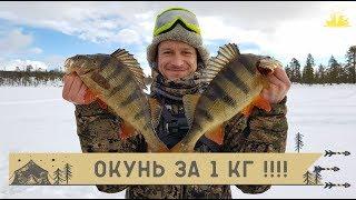 Зимняя рыбалка на кольском полуострове