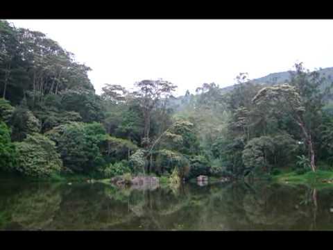 بحيرة فندق الهوناس فولس  Hunas Falls Resort