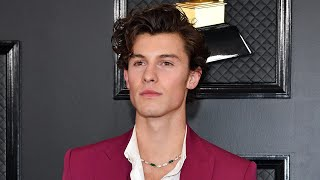 Shawn Mendes Arrives Without Camila Cabello   Grammys 2020