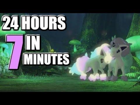7分鐘看完《寶可夢:劍/盾》24小時的生態直播