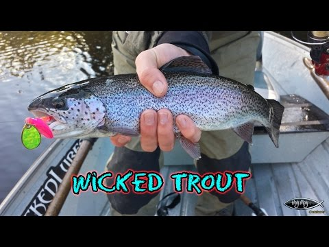 Photos & Videos – Wicked Lures