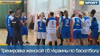 Женская сборная Украины по баскетболу провела тренировку перед матчами с Болгарией и Испанией