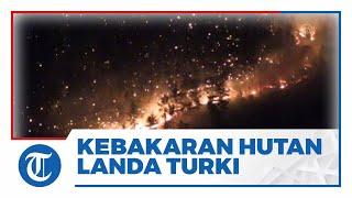 Kebakaran Hutan Landa Turki, 3 Orang Tewas dan 58 Dirawat karena Luka Bakar