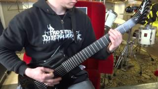 Divine Heresy - Facebreaker - 7 String Guitar Cover