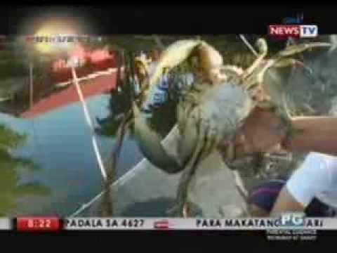 Isang hanay ng mga pagsasanay sa hall para sa pagbaba ng timbang