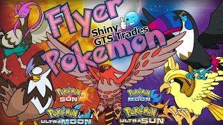 Toucannon  - (Pokémon) - Pokemon Sun/Moon & Ultra   Shiny   Pidgeot Swellow Staraptor Talonflame Unfezant Toucannon