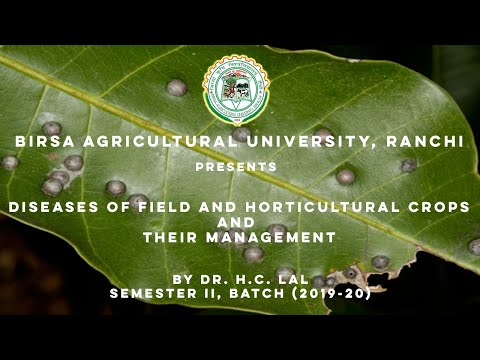 , title : 'Diseases of field and horticultural crops   By H.C. lal