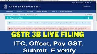 GSTR 3B Live Filing: offset liabilities pay GST and submit GSTR 3B online, GSTR 3B Offset Liability