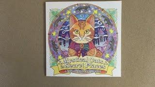 Mystical Cats in Secret Places: A Cat Lover's Coloring Book flip through