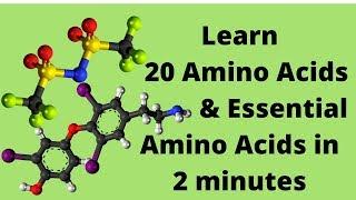 The 20 Amino Acids and Essential Amino Acids Mnemonic