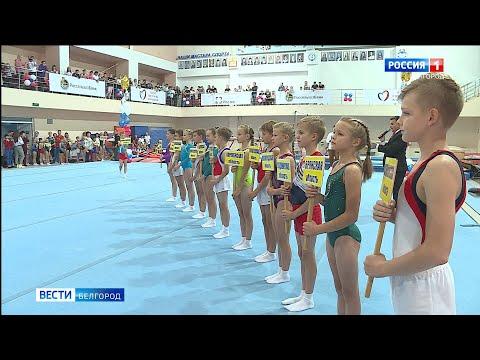 В Белгороде проходит турнир на призы Светланы Хоркиной
