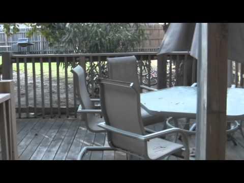 2610 N Racine: 2 Bed / 2 Bath - Modern Rehab, Duplex