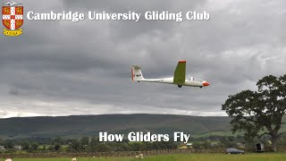 How Gliders Fly