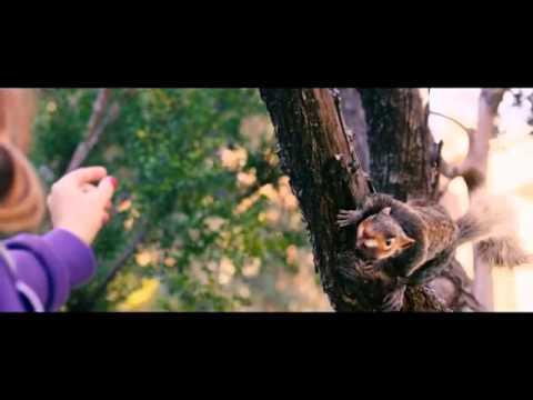 恐怖電影《食人松鼠》牠們在吃什麼