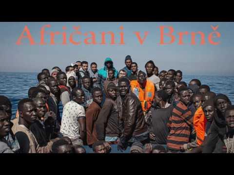 Tomio Okamura: Afričani v Brně