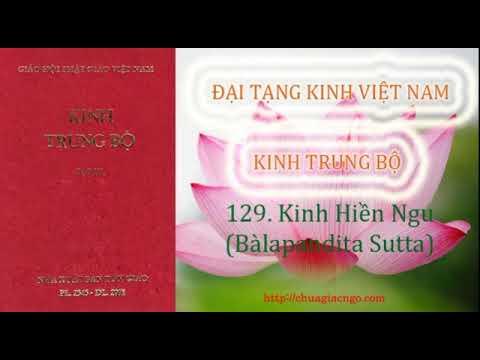 Kinh Trung Bộ - 129. Kinh Hiền ngu