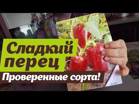Какой сладкий перец посадить.   Проверено на Урале