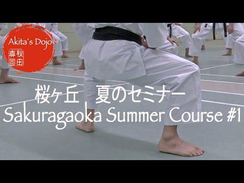 【Summer Course 2020】#1 - Shotokan Karate Seminar at Sakuragaoka in Germany【Akita's Karate Video】