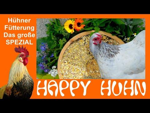 Happy Huhn 119: Hühnerfütterung - DAS SPEZIAL mit 6 Futterrezepten, Hühnerfutter selber machen