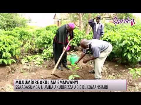 Ssabasumba jjumba atenderezza ab'e Bukomansimbi mu kulima emmwanyi