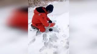 Рыбалка кушум западный казахстан