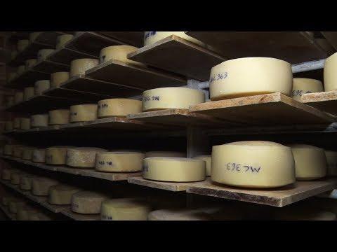 Herança suíça: conheça o queijo Moleson, produzido em Nova Friburgo