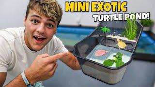 BUYING My *NEW* BABY ALBINO TURTLE TUB!! (expensive)
