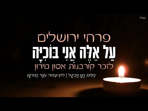 לזכר קורבנות אסון מירון: פרחי ירושלים מרגשים - 'על אלה אני בוכיה'
