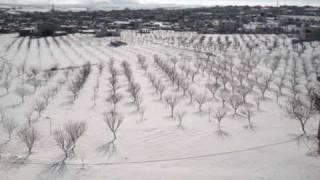 preview picture of video 'الثلج في عسال الورد'