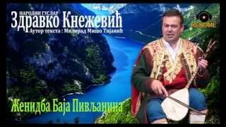 Download GUSLE - Zdravko Knezevic - ZENIDBA BAJA PIVLJANINA- Novo