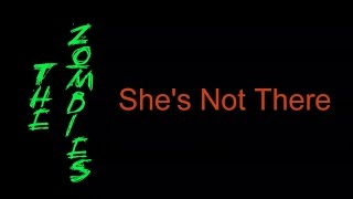 The Zombies - She's Not There  ( lyrics )