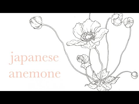 あなただけのお花を一輪描いてデータをお渡します 美しいアナログ線画イラスト、挿絵やプレゼントに イメージ1