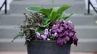 Planting a Part-Shade Container for Our Front Porch!