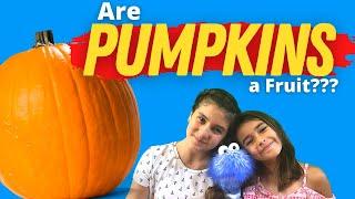 Are PUMPKINS a Fruit? | Pumpkin Facts For Kids