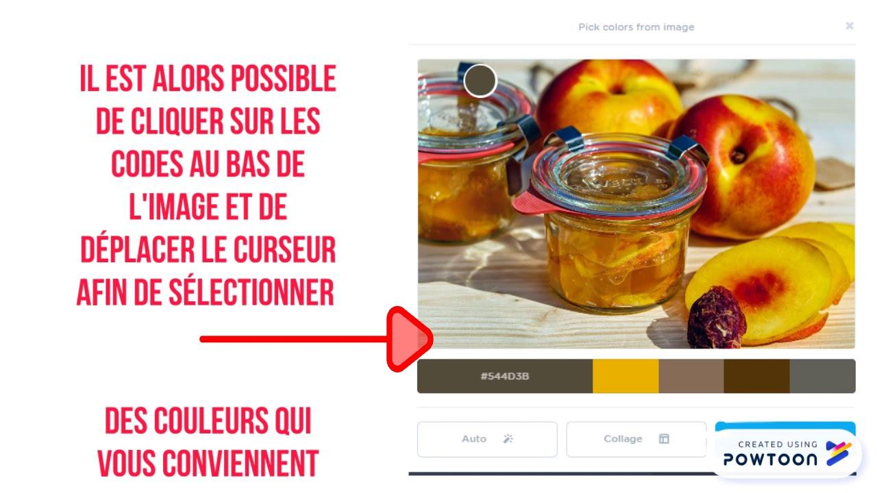 L'outil COOLORS.CO Screenshot Download