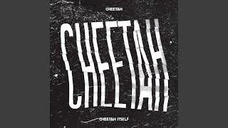 Cheetah - Crazy Diamond (Instrumental)